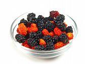 Mixed Wild Berries