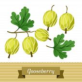 Set of various stylized gooseberries.