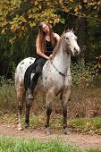 stock photo of appaloosa  - Beautiful girl riding a horse without bridle or saddle in autumn - JPG