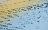Irish Tax Form. Personal Income Tax Form.