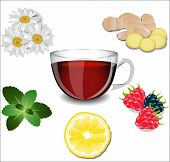 A Cup Of Tea And Various Ingredients: Lemon, Ginger, Chamomile, Mint And Berries.