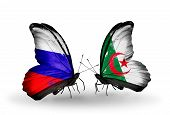 Two Butterflies With Flags On Wings As Symbol Of Relations Russia And Algeria