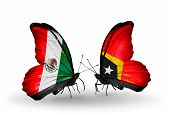 Two Butterflies With Flags On Wings As Symbol Of Relations Mexico And East Timor