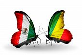 Two Butterflies With Flags On Wings As Symbol Of Relations Mexico And Kongo
