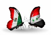 Two Butterflies With Flags On Wings As Symbol Of Relations Mexico And Syria