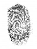 black finger print isolated on white background