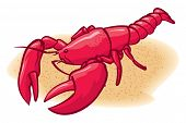 picture of lobster  - An Illustration of ared lobster on the beach - JPG