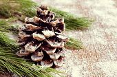 closeup of a branch of pine tree and a pine cone with snowflakes on a wooden surface