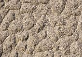 image of feldspar  - The texture of the processed gray granite closeup - JPG
