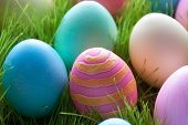 Easter Eggs On Green Grass Which Are Colorful