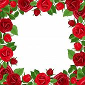 Frame with red roses and green leaves. Vector illustration.