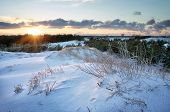Winter Landscape With Sunset Sky. Sunset In Snowy Forest
