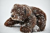 Stuffed Animal Toy  Brown Teddy Bear Lost By Children In Winter Storm Waiting Alone In The Cold Free