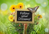 An image of a little chalkboard in the garden with the message follow your dreams