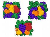 Fresh fruit compositions