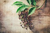 stock photo of elderberry  - Fresh elderberry on old wooden background - JPG