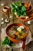 picture of nettle  - Nettle soup with eggs and carrot in the bowl on the wooden table - JPG