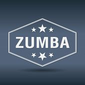 picture of zumba  - zumba hexagonal white vintage retro style label - JPG