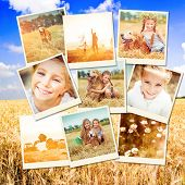 foto of kites  - photo collage of family with a dog resting in a field and flying a kite - JPG