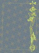 stock photo of poppy flower  - Gothic poppy card - JPG