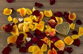 image of wedding feast  - roses as a gift and surprise to a feast - JPG