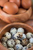 foto of quail egg  - Fresh chicken eggs and quail eggs at wooden plate closeup - JPG