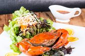 picture of exoskeleton  - Fried crab and sald vegetable in restaurant - JPG