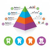 picture of teeth  - Pyramid chart template - JPG