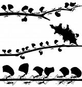 pic of ant  - Set of illustrated silhouettes of leaf cutter ants on branches - JPG