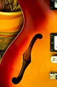 stock photo of semi  - detail of semi acoustic guitar and a vase - JPG