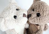 Teddy Bear Hugs And Kisses