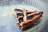 last piece of Blueberries jam tart