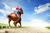 Racing Horse Coming First To Finish Line poster