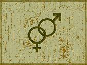 grunge male female symbols vector illustration