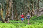 Hiking couple tourists walking together in forest trail path in summer travel vacation destination i poster