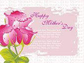 romantic pink rose background with place for text on mothers day