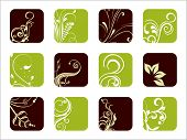creative floral pattern artwork icons
