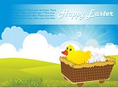 foto of duck egg blue  - nature pattern background with easter egg trolly in duck - JPG