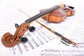 ancient viola