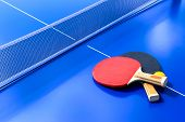 Blue Table Tennis Or Ping Pong. Close-up Ping-pong Net. Close Up Ping Pong Net And Line. Two Table T poster