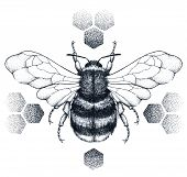 Striped Bee Tattoo. Honey Bee Sits On Honeycombs. Dotwork Tattoo On Chest, Back Or Thigh. Symbol Of  poster