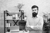 Confident Bearded Man In Office. Confident Businessman. Office Life. Serious Bearded Man At Workplac poster