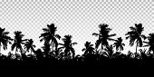 Realistic Illustration Of A Horizon From The Tops Of Palm Trees. Black Isolated On Transparent Backg poster