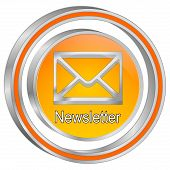 Decorative Silver Orange Newsletter Button - 3d Illustration poster