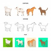 Isolated Object Of Breeding And Kitchen Sign. Set Of Breeding And Organic Vector Icon For Stock. poster