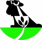 Gardener Landscaper With Shovel Digging Plant