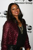 LOS ANGELES - JAN 10:  Tamala Jones attends the ABC TCA Winter 2013 Party at Langham Huntington Hote