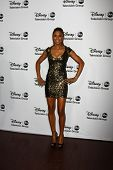 LOS ANGELES - JAN 10:  Toks Olagundoye attends the ABC TCA Winter 2013 Party at Langham Huntington H