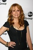 LOS ANGELES - JAN 10:  Lea Thompson attends the ABC TCA Winter 2013 Party at Langham Huntington Hote