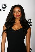 LOS ANGELES - JAN 10:  Rochelle Aytes attends the ABC TCA Winter 2013 Party at Langham Huntington Ho